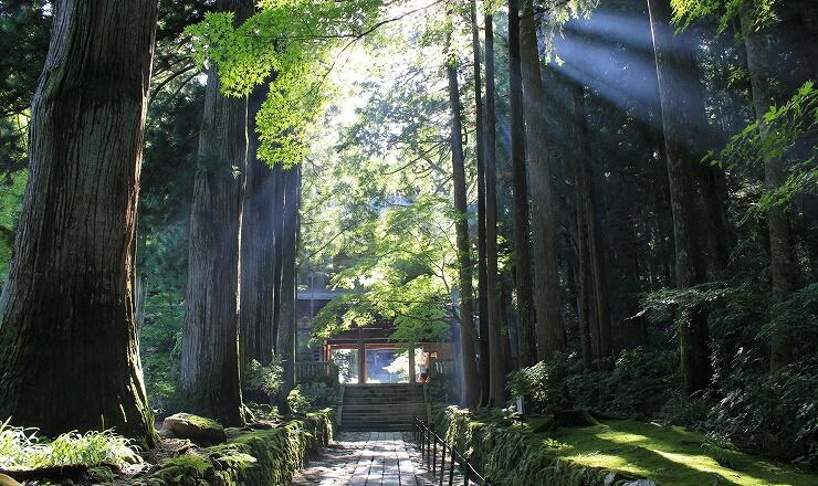光前寺の参道